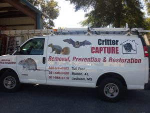 Critter Capture LLC van